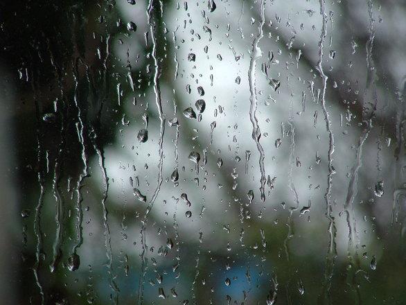 טיפים חשובים למניעת נזקי הגשם