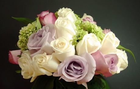 השוואת מחירי פרחים