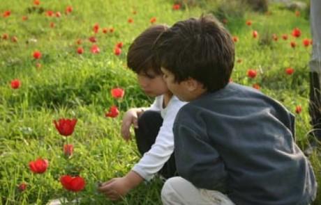 איך מדברים עם ילדים על המלחמה ?