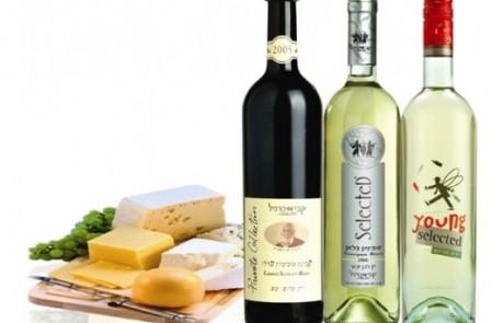 לקראת חג שבועות: טיפים להתאמת יין לבן לגבינות