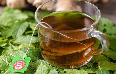לרגל יום התה הבינלאומי כל מה שצריך לדעת על תה ☕️💁🏻♀️