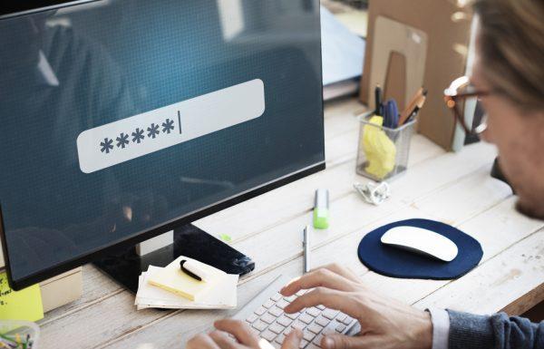 חורים ברשת – מה אתם יודעים על אבטחת המידע בעסק שלכם
